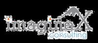 ImagineX Consulting